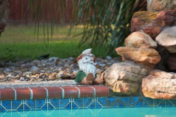The Travelling Gnome's cousin got as far as poolside.